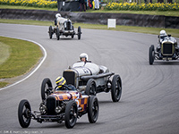 Duncan Pittaway, Julian Majzub, Mathias Sielecki, Edward Way, GN-Curtiss Vitesse, Sunbeam Indianapolis, Delage DH V12, Austin Hall & Scott Special, 2016 Goodwood Members' Meeting